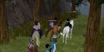 20070607_21_livescreen.jpg