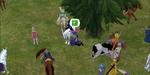 20070607_24_livescreen.jpg