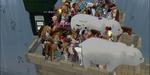 20070607_29_livescreen.jpg