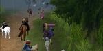 20070607_30_livescreen.jpg