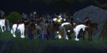 20070607_34_livescreen.jpg